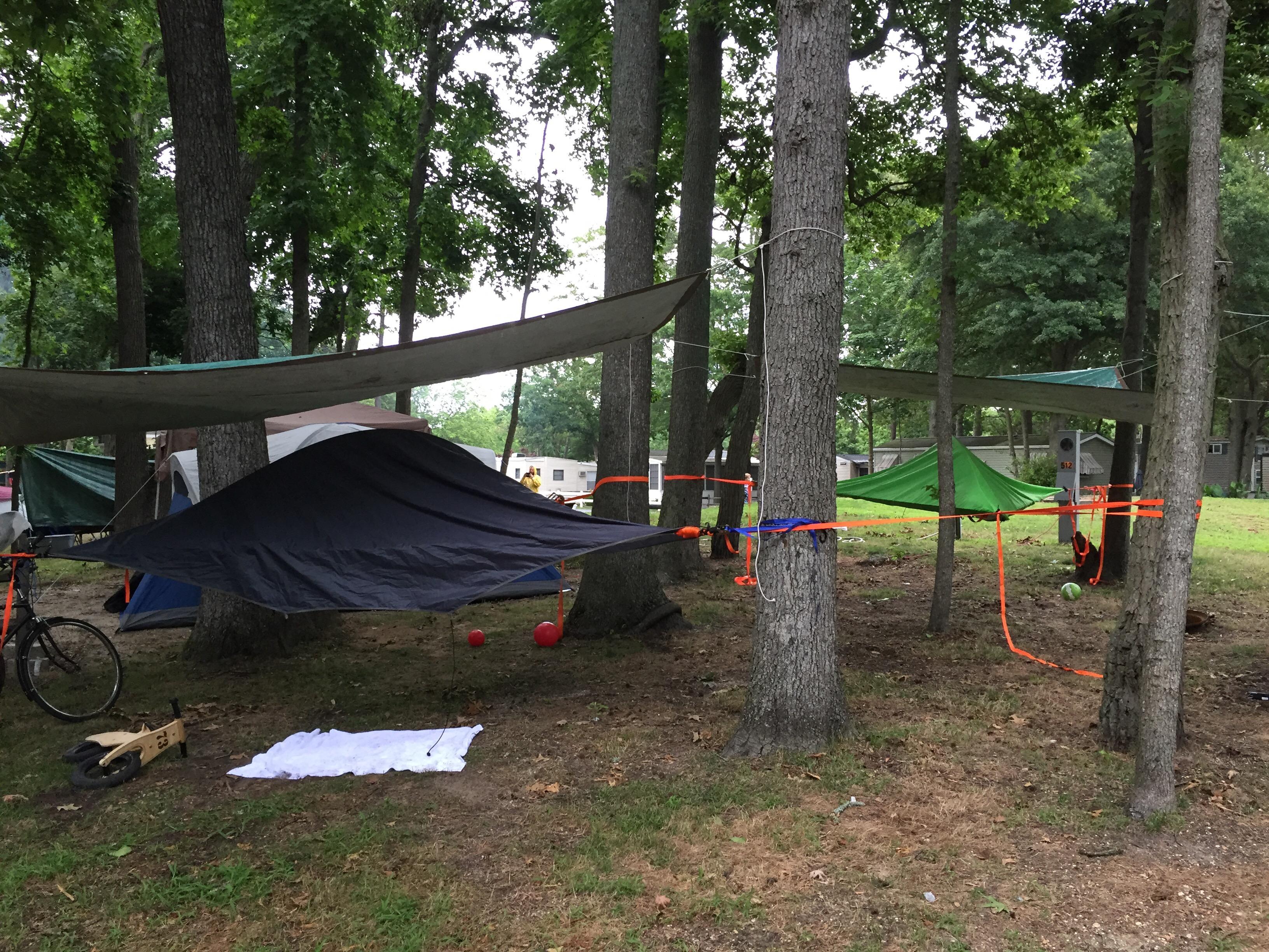by stingray photography copy safari tentsile tent d of s hammock